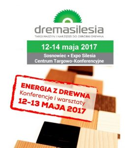 dremasilesia-energia-z-drewna