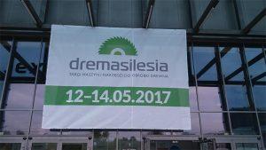dremasilesia-1